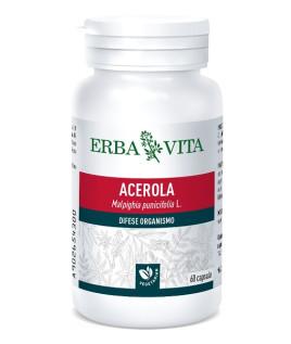 ACEROLA 60CPS 550MG EBV