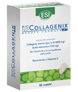 Biocollagenix 60oval